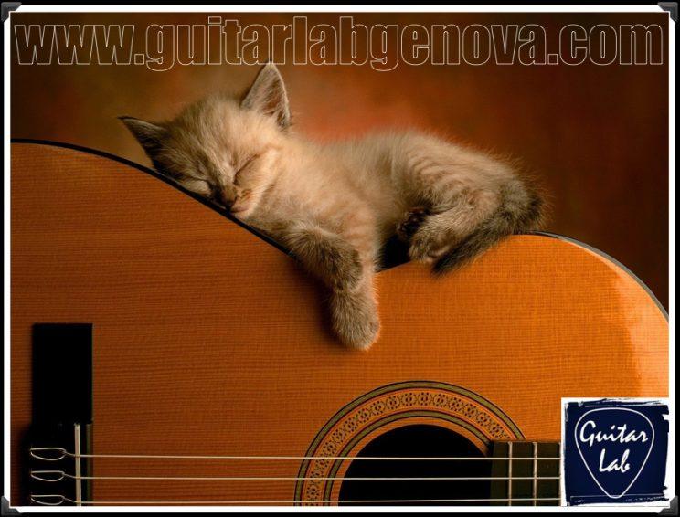 corsi di musica di GuitarLab